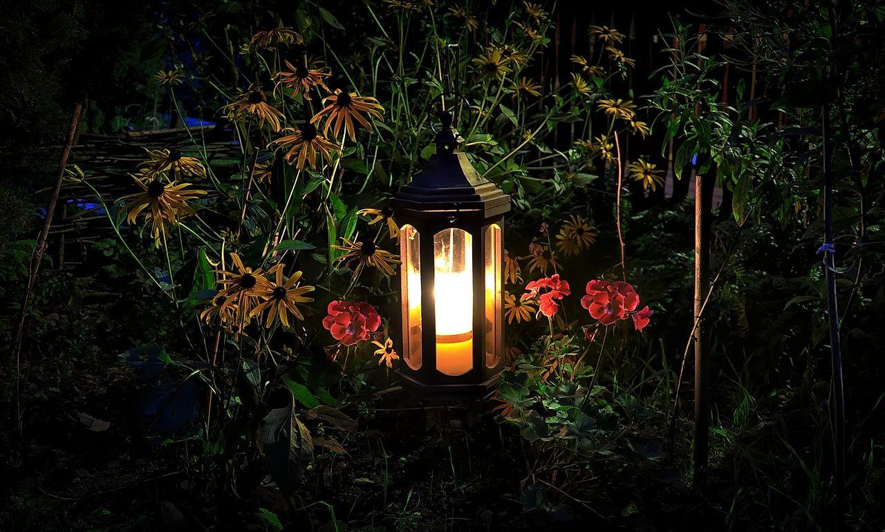 Oświetlenie LED do salonu i na zewnątrz