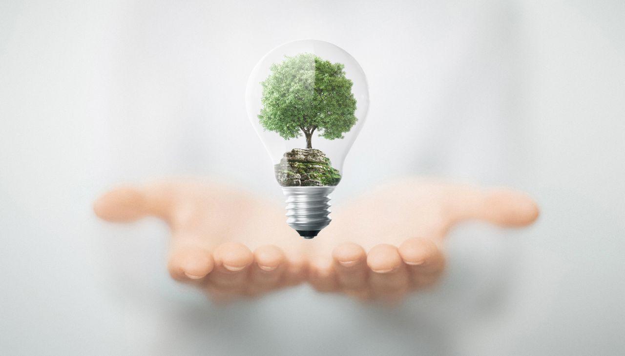 Jak wzmocnić swój organizm za pomocą naturalnych środków?