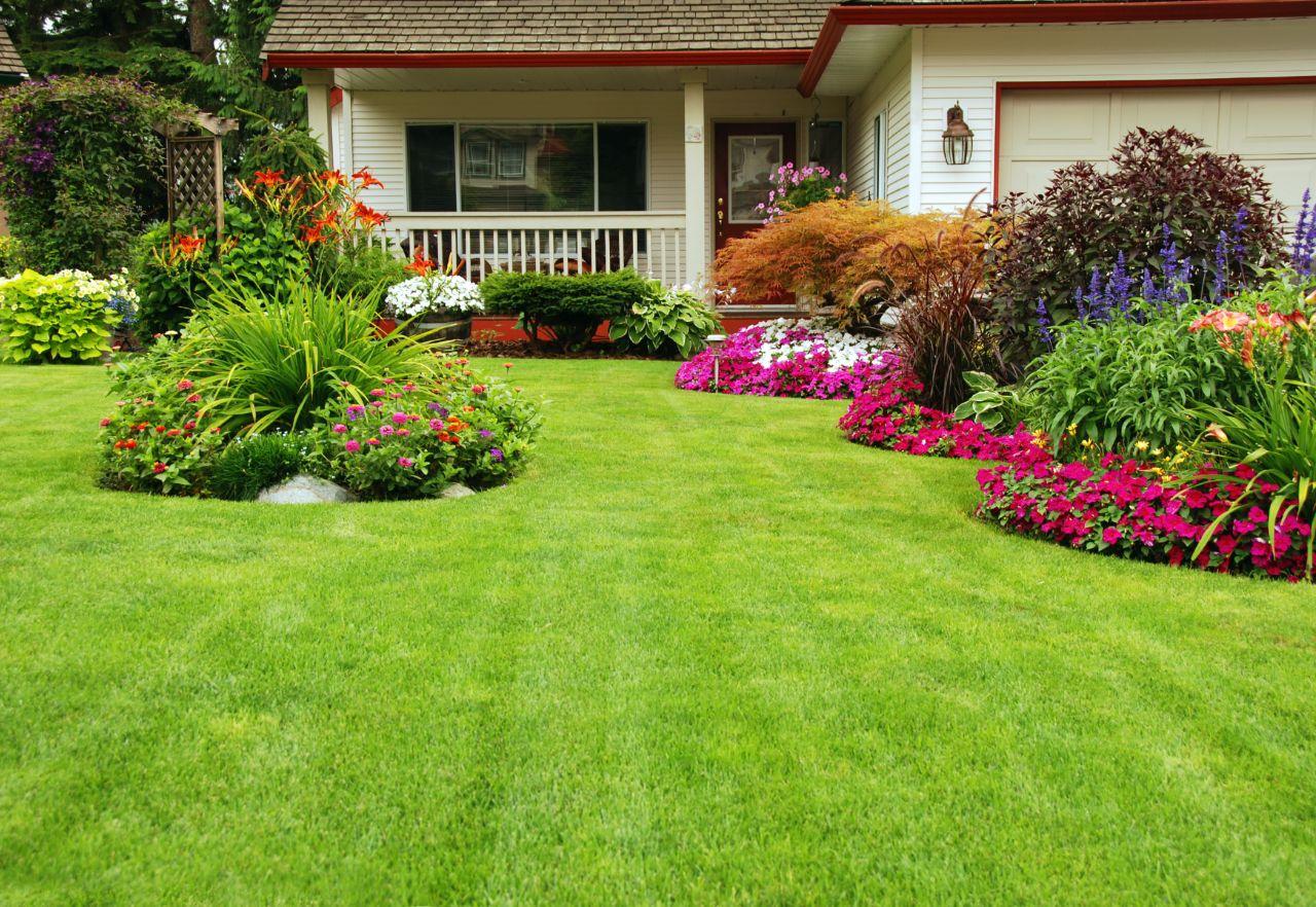 Jak utrzymać właściwy stan trawnika w swoim ogrodzie?