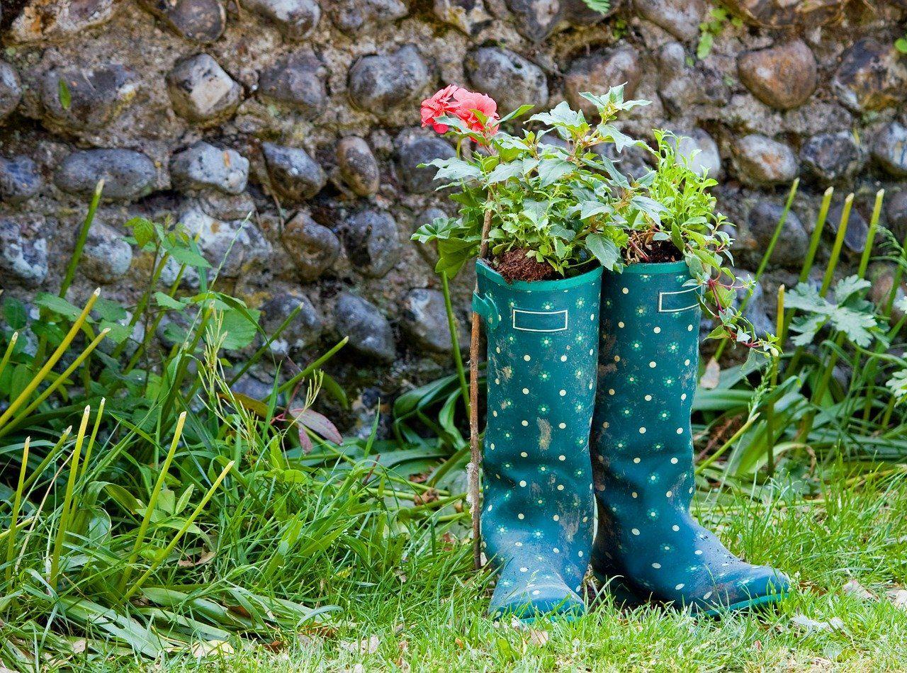Jak w prosty sposób ożywić swój ogród?