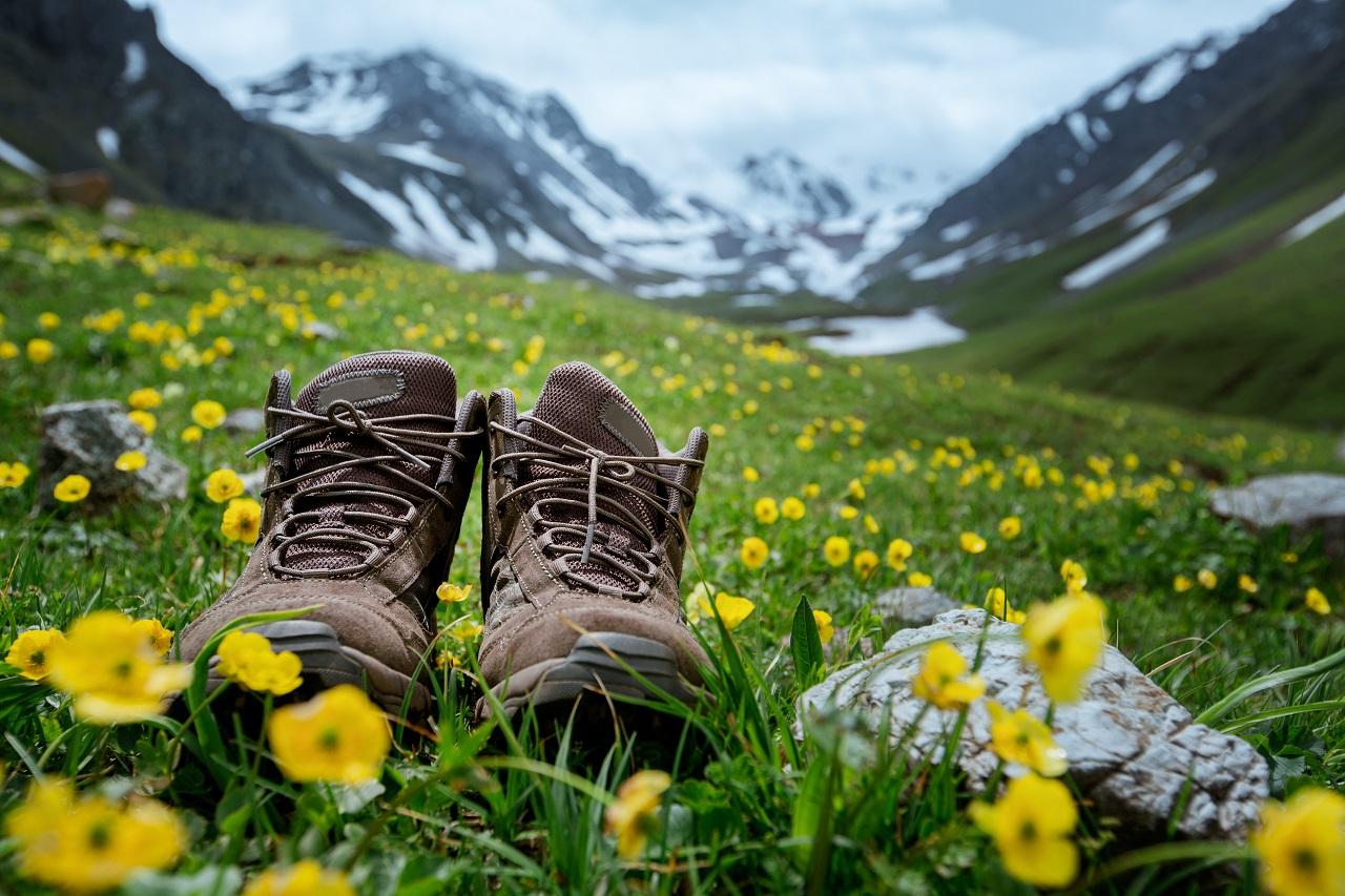 Wyprawy górskie – w jaki rodzaj obuwia należy zainwestować?